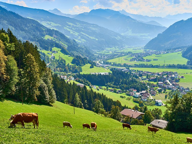 Best-Of-Tirol-Zillertal